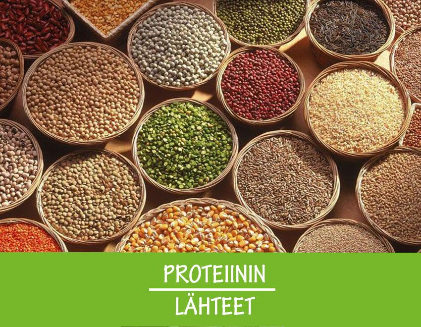 Parhaat proteiinin lähteet